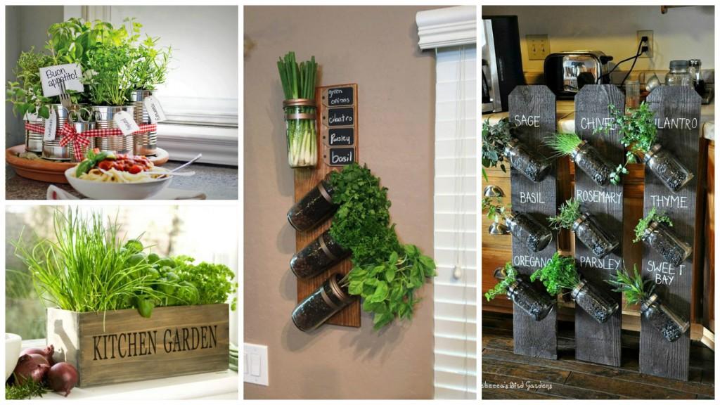 10 coole tipps für diy kräutergärten für küche